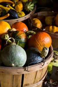 Photo of a basket filled with assorted winter squash.